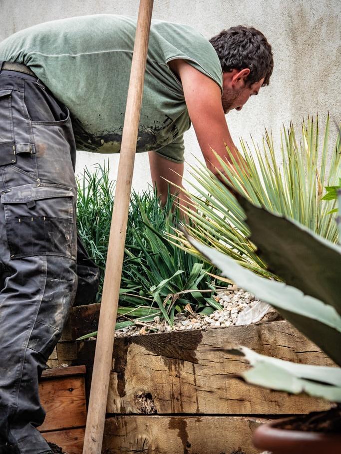L'entretien de toutes vos plantations
